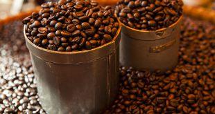 فروش دانه قهوه اندونزی