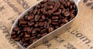 عرضه قهوه کاستاریکا