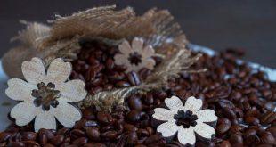 مرکز توزیع دانه قهوه