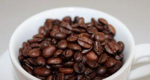 فروش دان قهوه