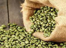 پخش عمده دانه قهوه سبز