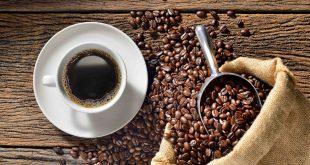 قهوه در بوشهر