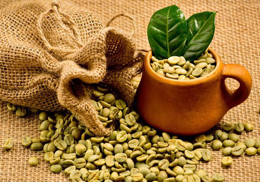 دانه سبز قهوه
