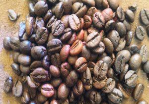 واردات قهوه پلنتیشن درجه یک