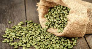 واردات قهوه