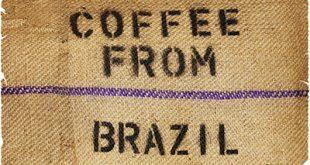 پخش قهوه برزیل