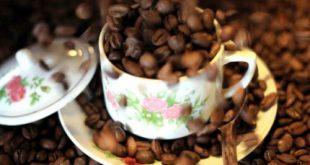 خرید قهوه ارزان