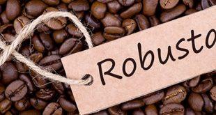 پخش قهوه روبوستا